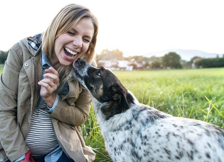 Kvinne med hund på en eng